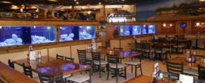 RestaurantFurniture.net Supplies Molly's Seafood Shack with New Restaurant Chairs and Bar Stools